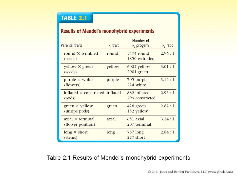 Table 2.1 Results of Mendel's monohybrid experiments