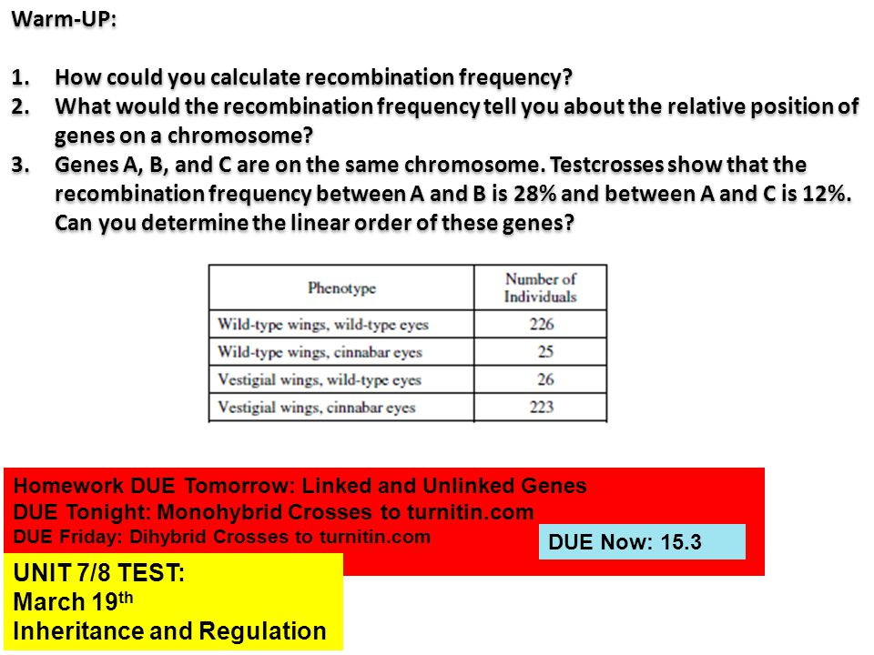 How could you calculate recombination frequency