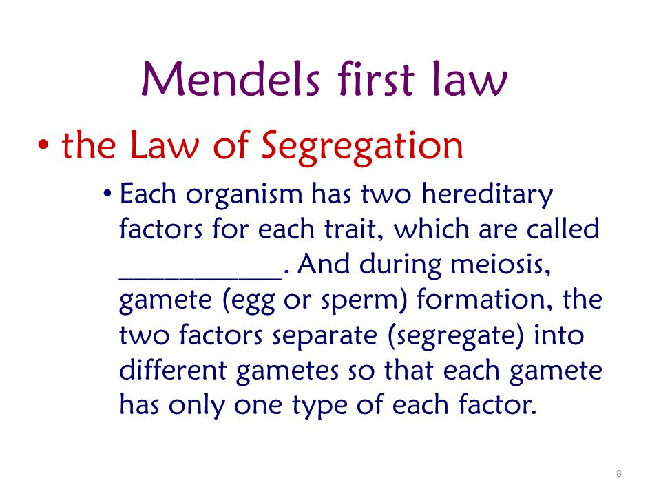 Mendels first law the Law of Segregation
