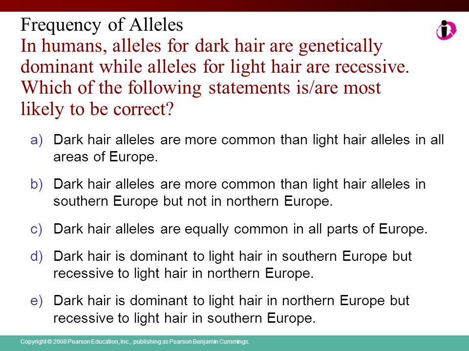 Frequency of Alleles In humans, alleles for dark hair are genetically dominant while alleles for light hair are recessive. Which of the following statements is/are most likely to be correct