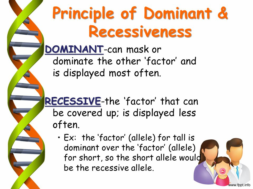 Principle of Dominant & Recessiveness