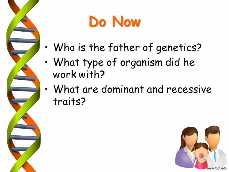 Do Now Who is the father of genetics