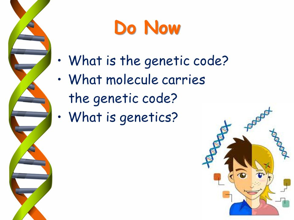 Do Now What is the genetic code What molecule carries