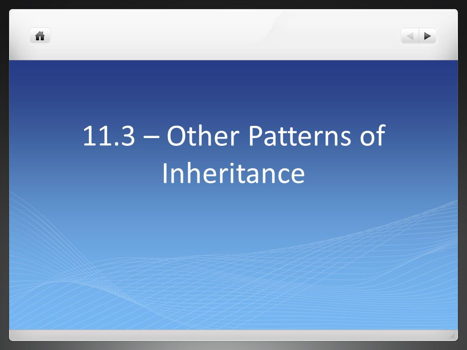 11.3 – Other Patterns of Inheritance