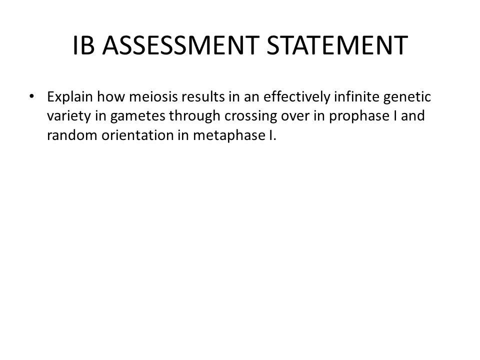IB ASSESSMENT STATEMENT