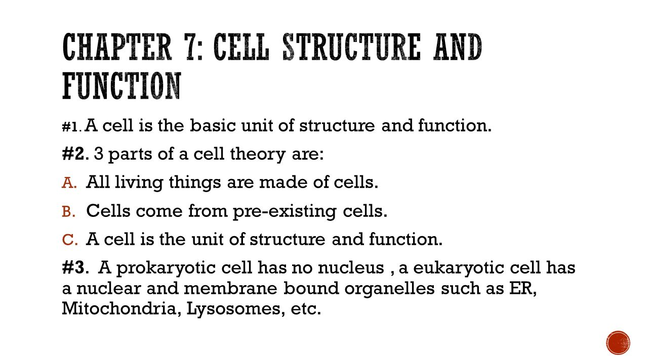 lab 3 cell structure and function The cell: anatomy and division 3-d model of composite observing differences and similarities in cell structure often gives students function for the cell.
