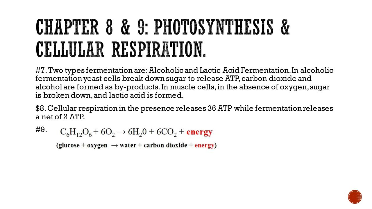 Chapter 8 & 9: Photosynthesis & cellular respiration.