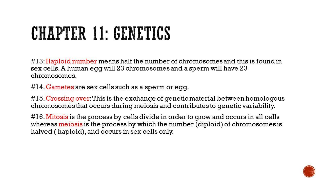 Chapter 11: genetics
