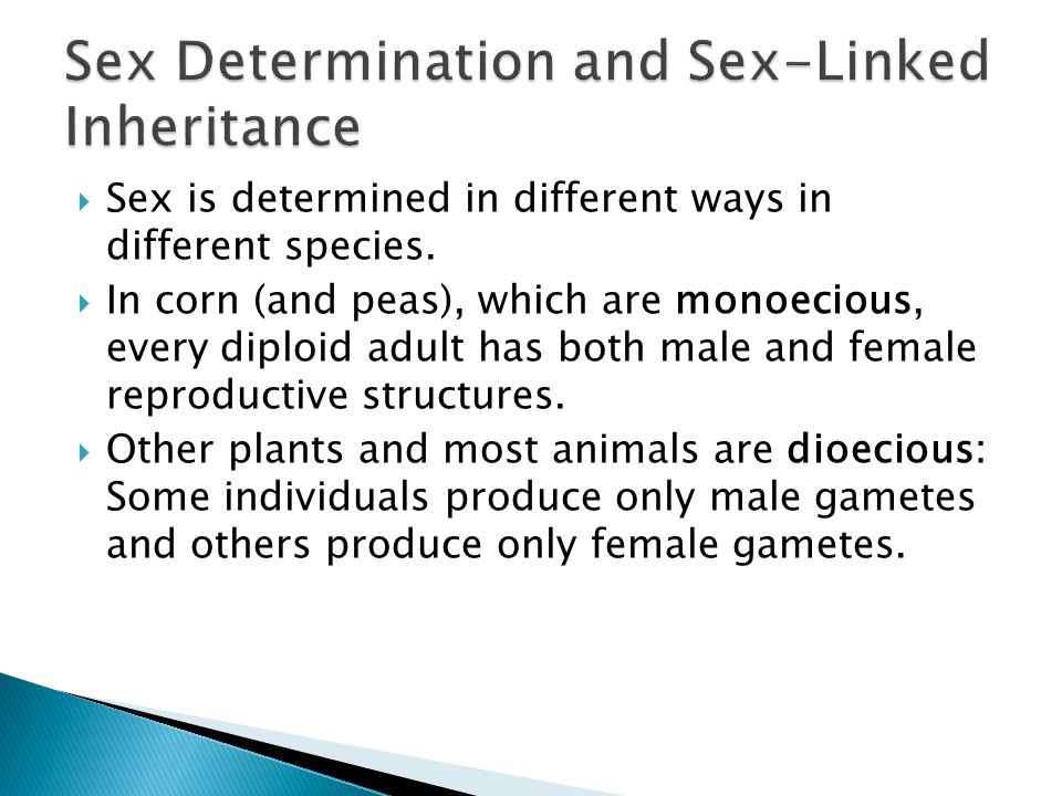 Sex Determination and Sex-Linked Inheritance