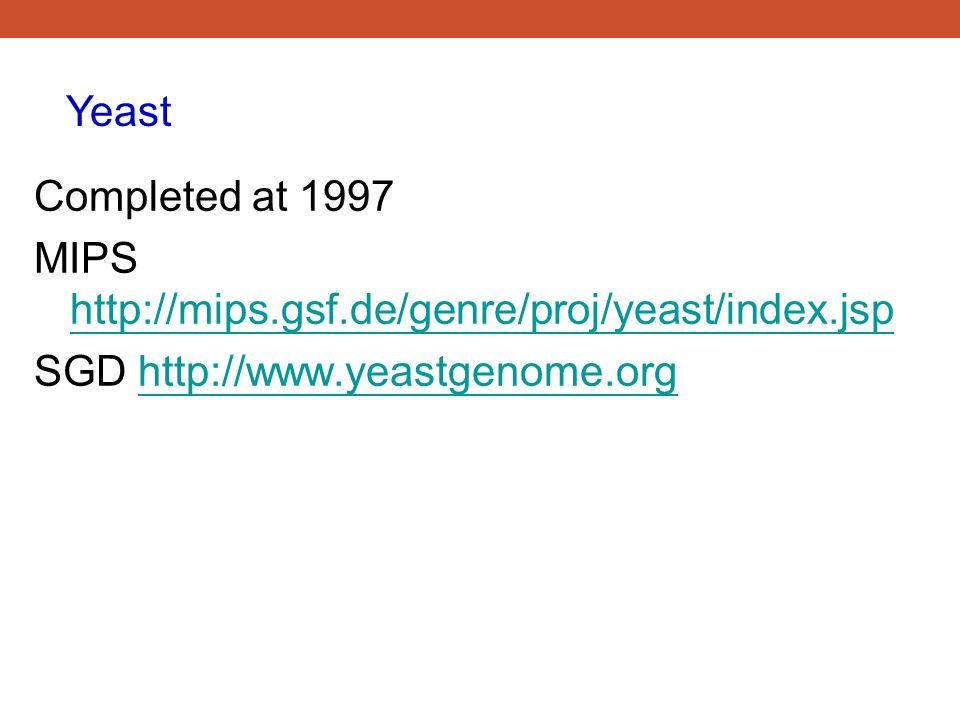 Yeast Completed at 1997. MIPS http://mips.gsf.de/genre/proj/yeast/index.jsp.
