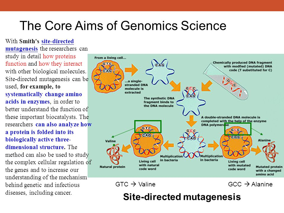 The Core Aims of Genomics Science