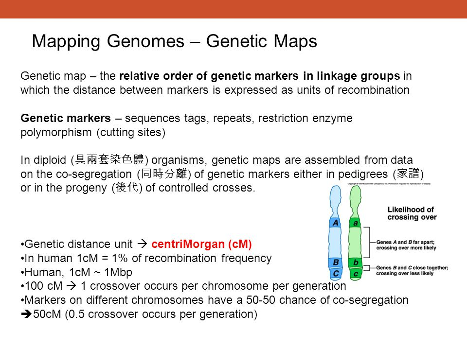Mapping Genomes – Genetic Maps
