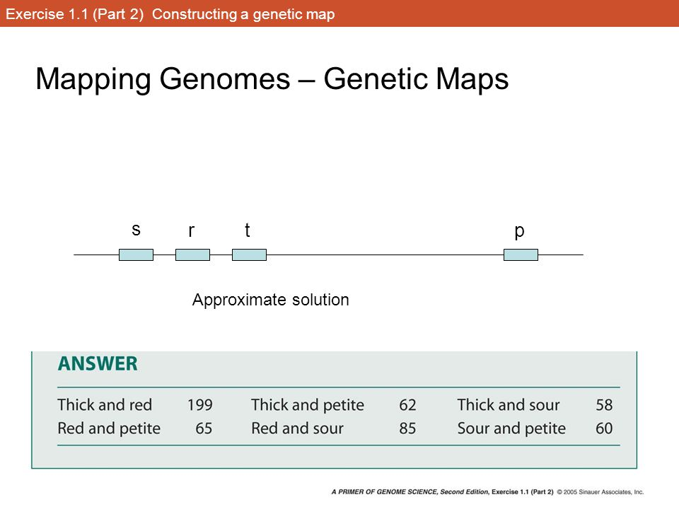 Exercise 1.1 (Part 2) Constructing a genetic map