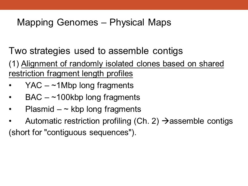 Mapping Genomes – Physical Maps