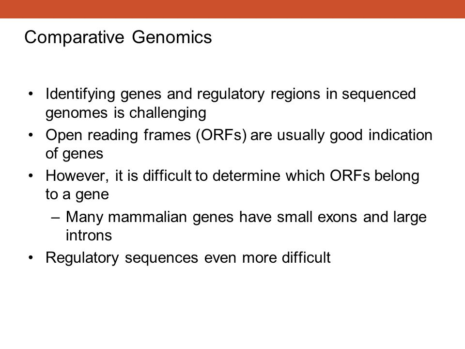 Comparative Genomics Identifying genes and regulatory regions in sequenced genomes is challenging.