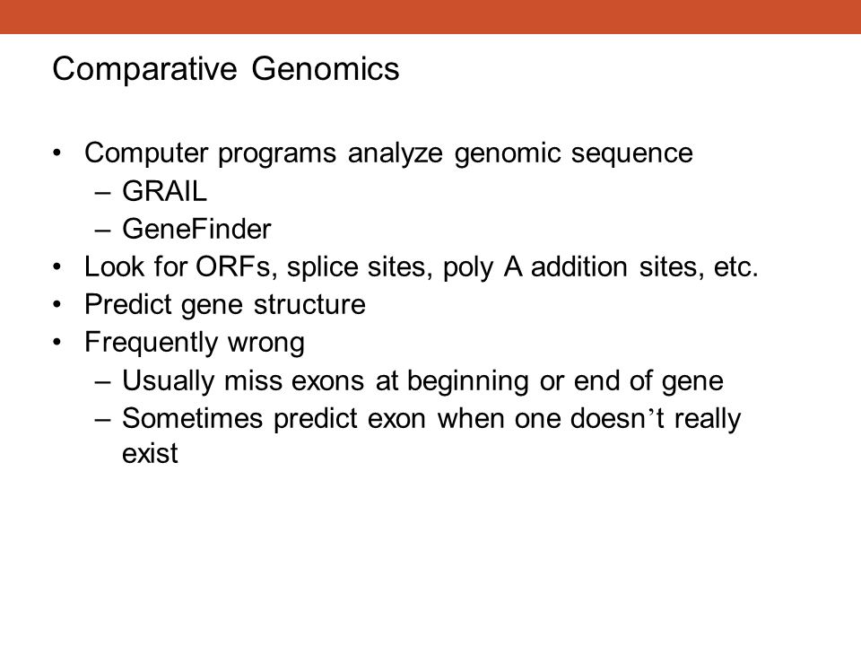 Comparative Genomics Computer programs analyze genomic sequence GRAIL