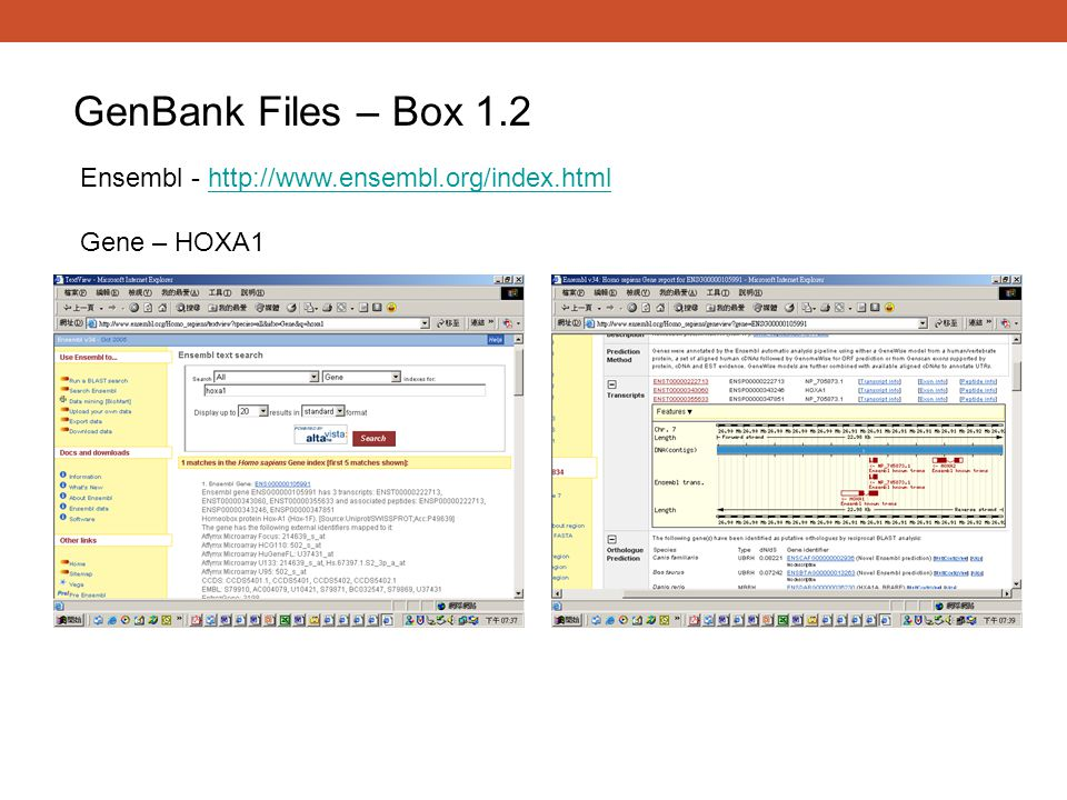 GenBank Files – Box 1.2 Ensembl - http://www.ensembl.org/index.html