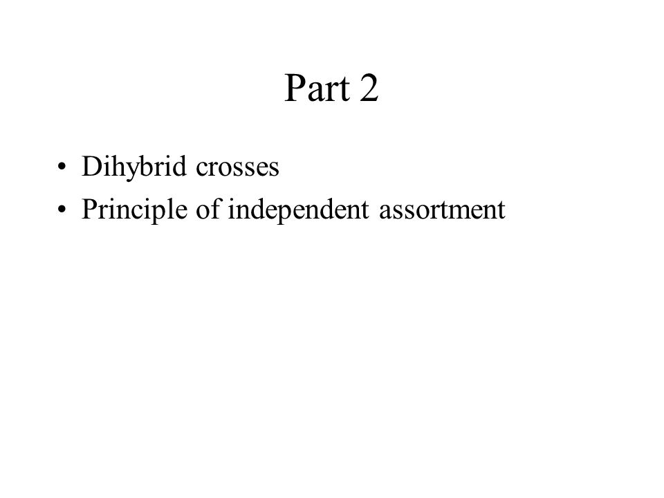 Part 2 Dihybrid crosses Principle of independent assortment