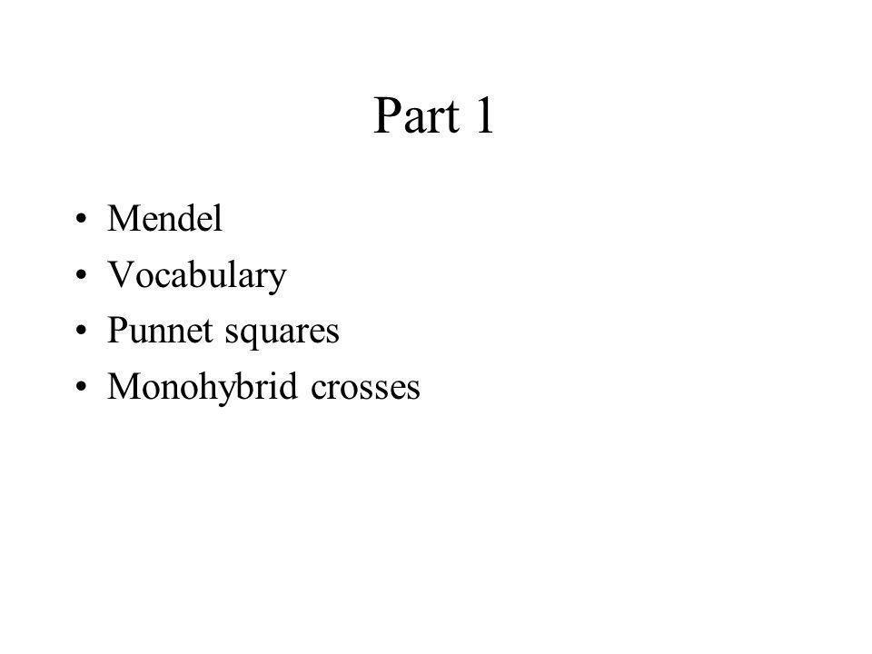 Part 1 Mendel Vocabulary Punnet squares Monohybrid crosses
