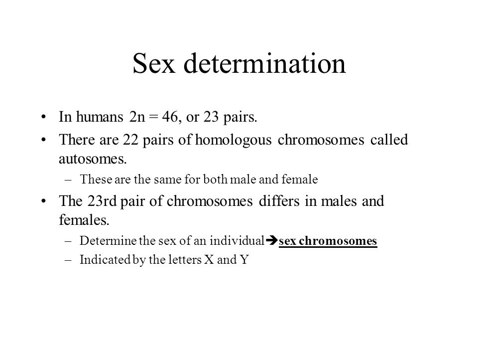 Sex determination In humans 2n = 46, or 23 pairs.