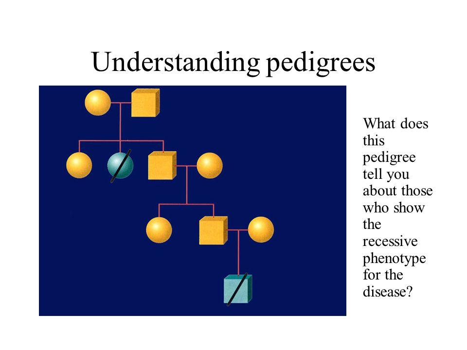 Understanding pedigrees