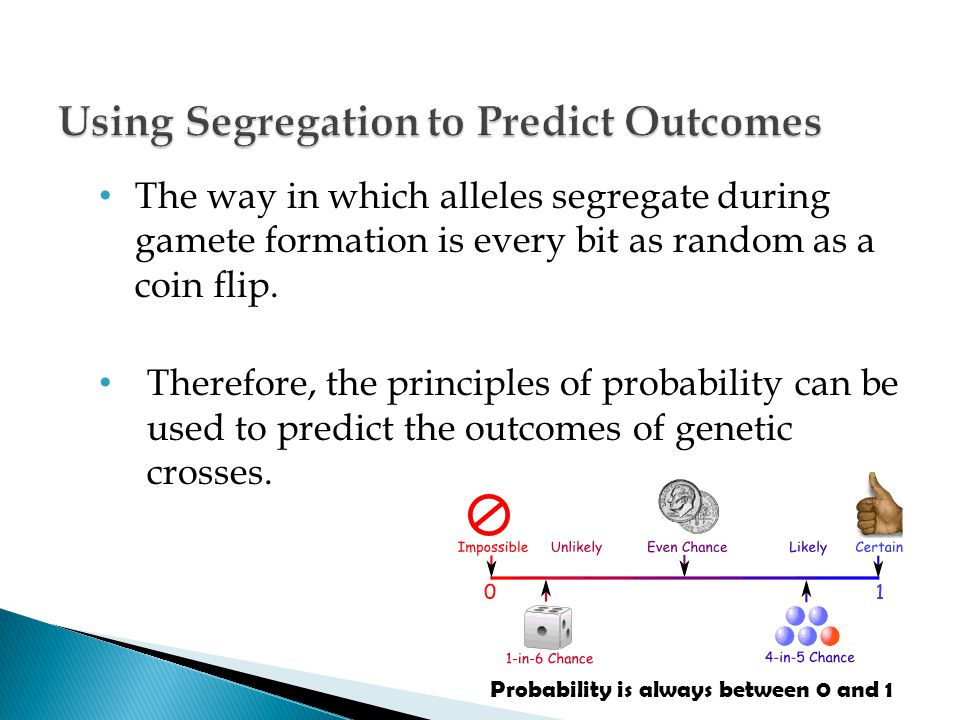 Using Segregation to Predict Outcomes