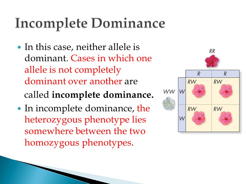 Incomplete Dominance In this case, neither allele is dominant. Cases in which one allele is not completely dominant over another are.