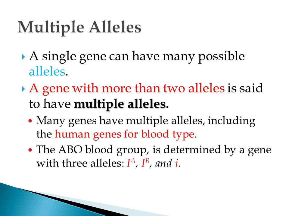 Multiple Alleles A single gene can have many possible alleles.