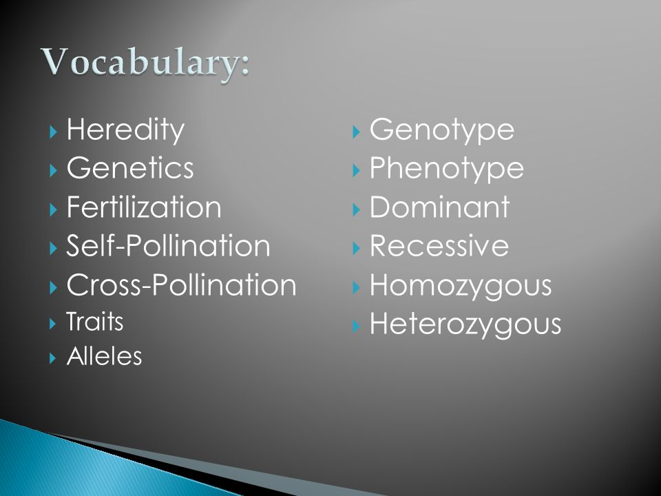 Vocabulary: Heredity Genetics Fertilization Self-Pollination