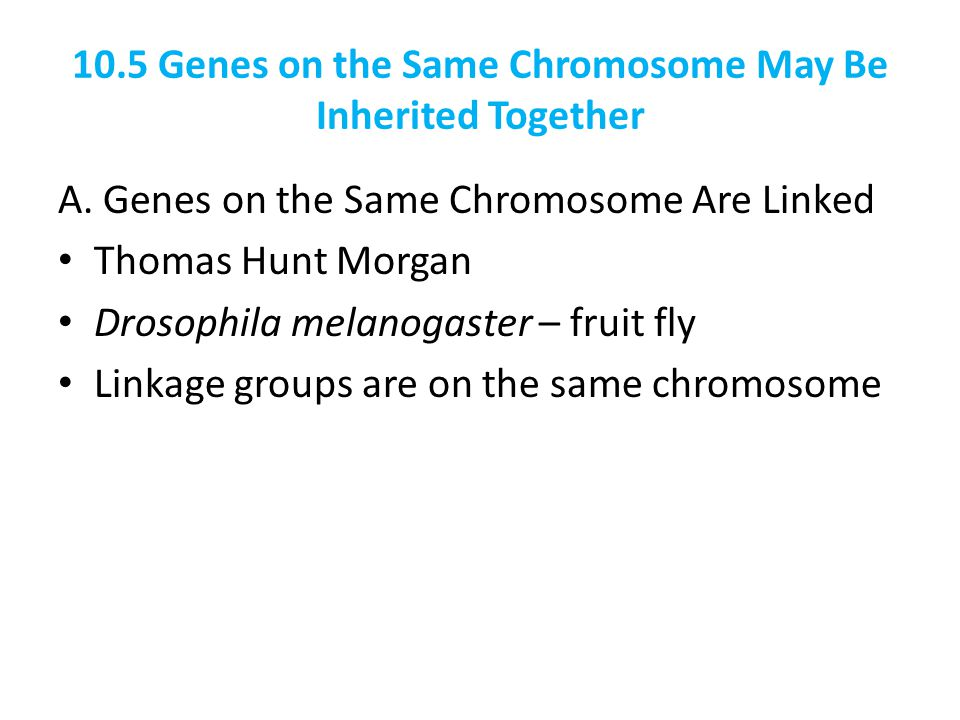 10.5 Genes on the Same Chromosome May Be Inherited Together