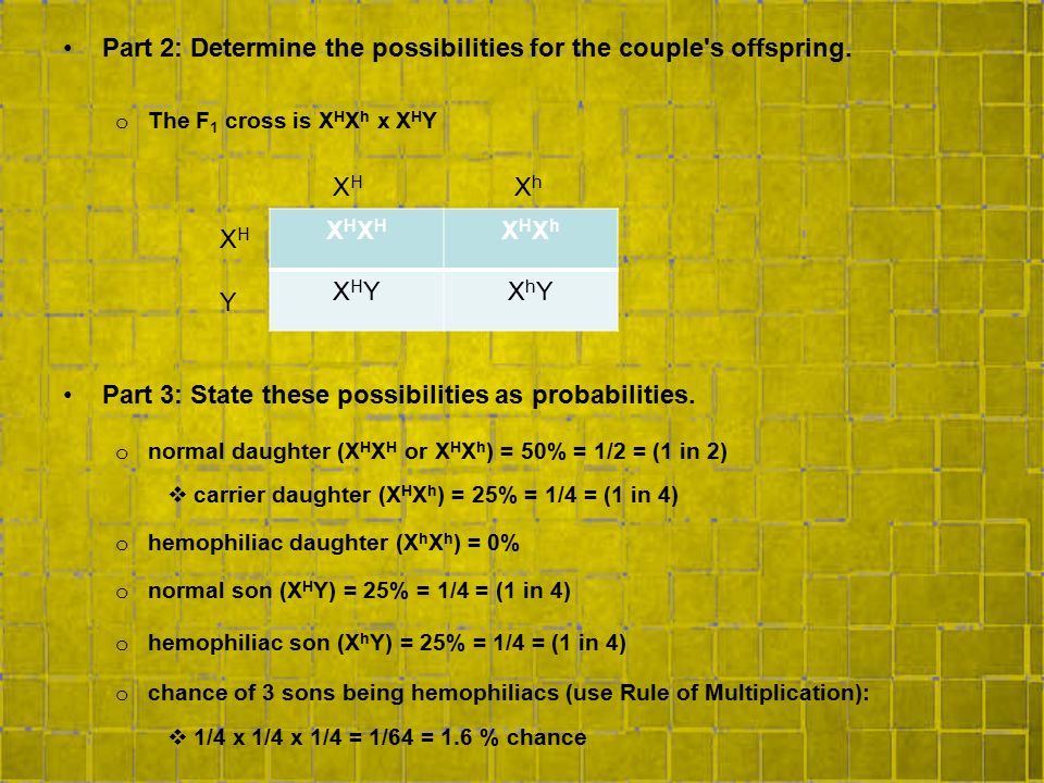 Part 2: Determine the possibilities for the couple s offspring.