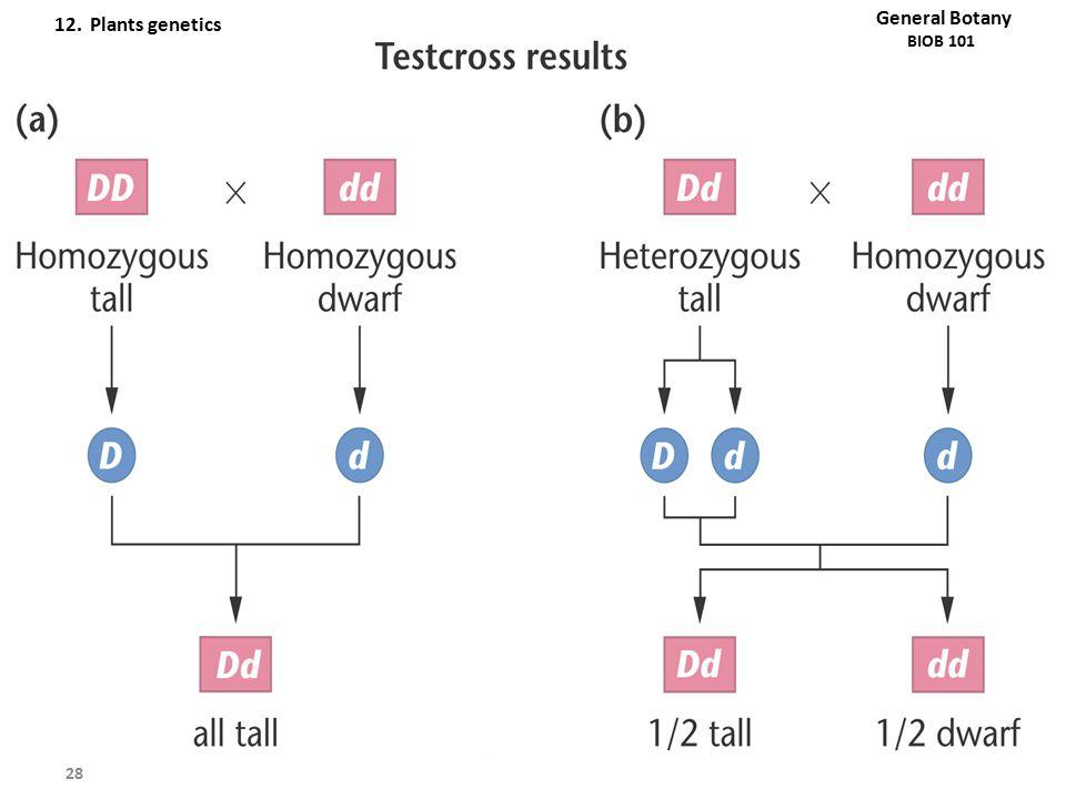 12. Plants genetics General Botany
