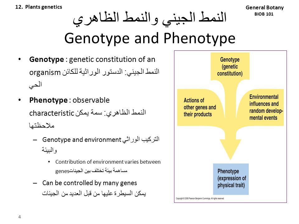 النمط الجيني والنمط الظاهري Genotype and Phenotype