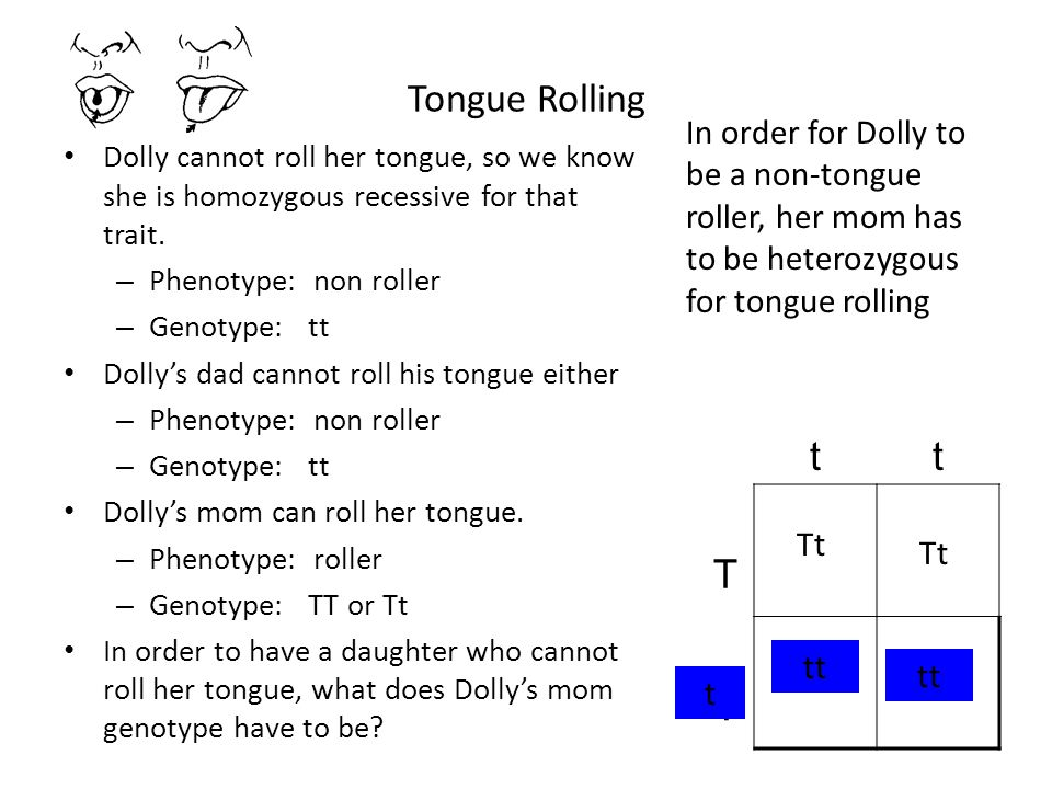 Tongue Rolling In order for Dolly to be a non-tongue roller, her mom has to be heterozygous for tongue rolling.