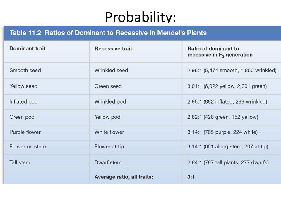 Probability: It's the mathematical tool used for predicting the likelihood of events in everyday life.