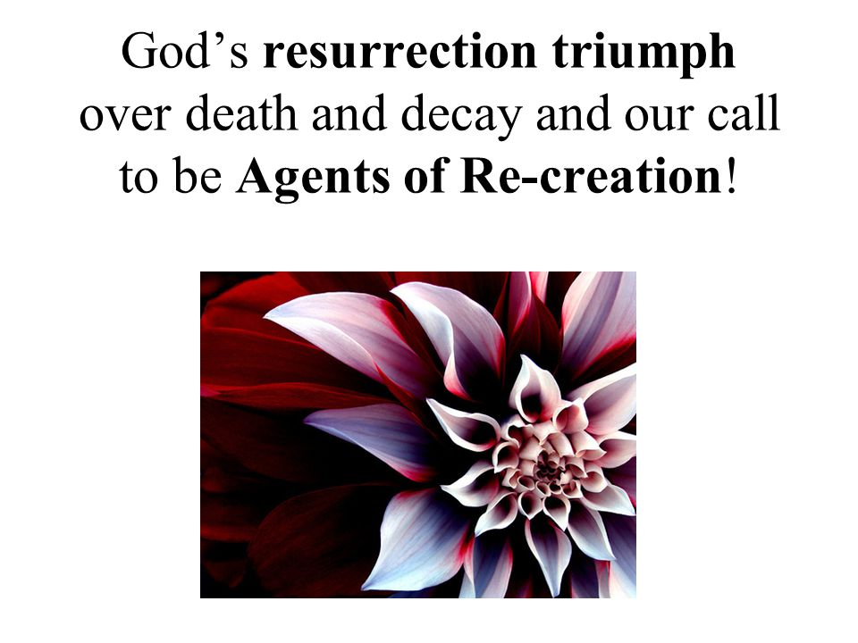 God's resurrection triumph over death and decay and our call to be Agents of Re-creation!