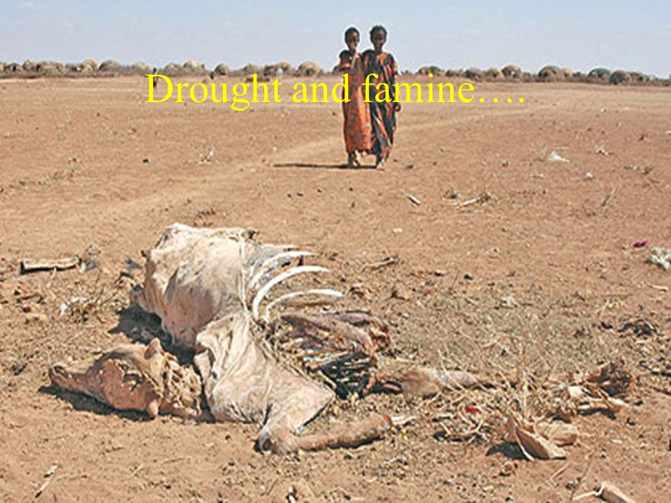 Drought and famine….