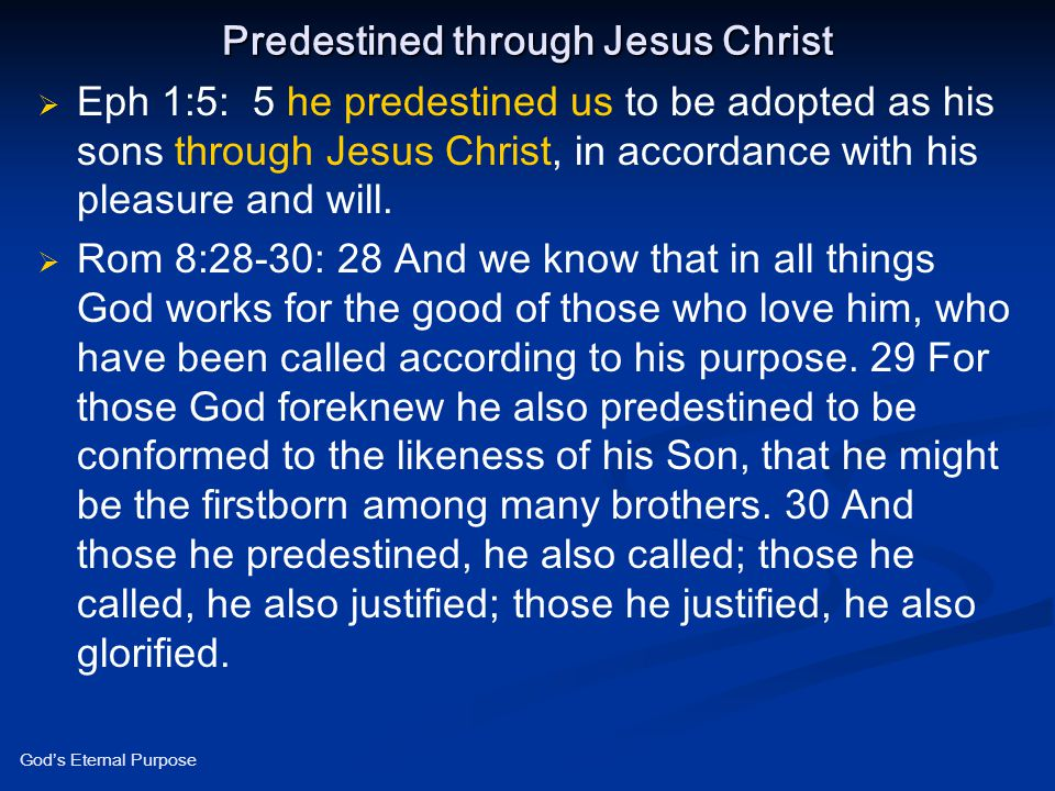 Predestined through Jesus Christ