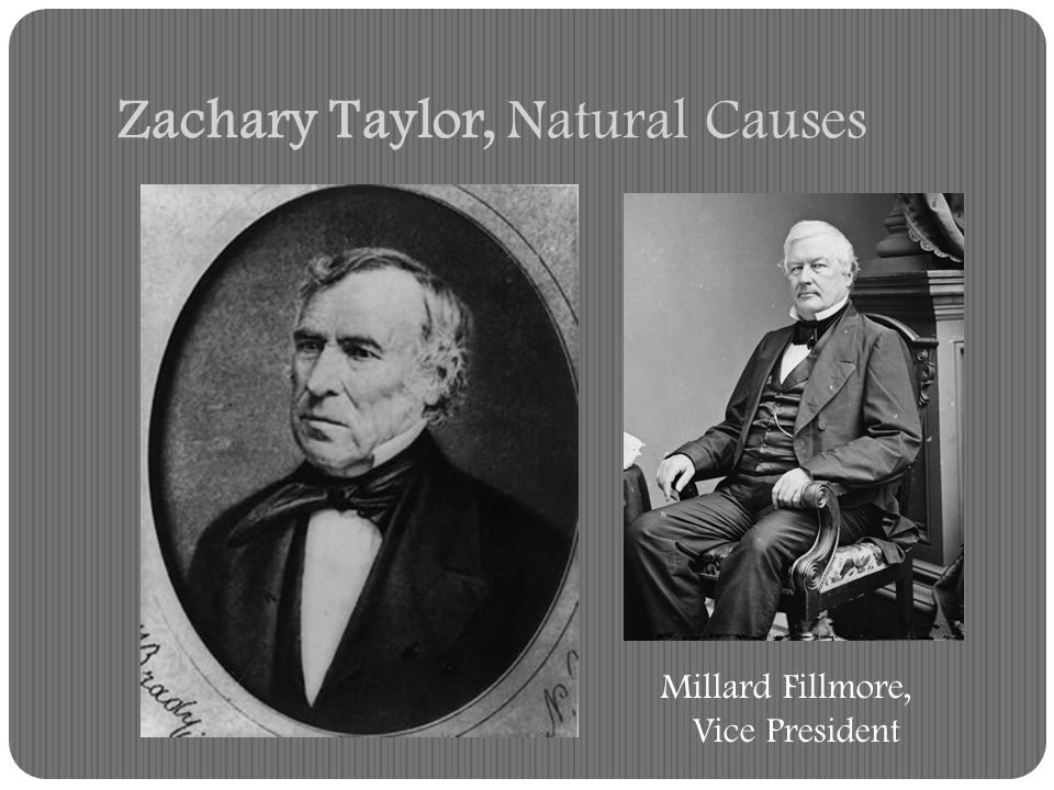 Zachary Taylor, Natural Causes