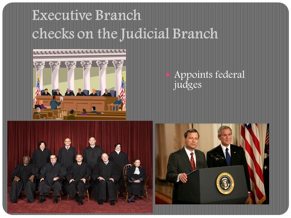 Executive Branch checks on the Judicial Branch