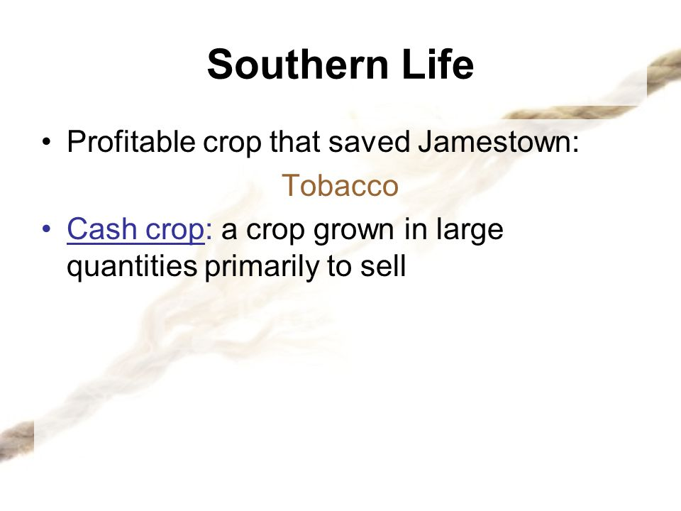 Southern Life Profitable crop that saved Jamestown: Tobacco