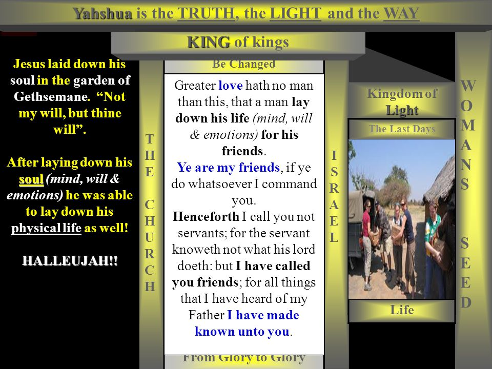 Evil Tree BEFORE Yahshua is the TRUTH, the LIGHT and the WAY