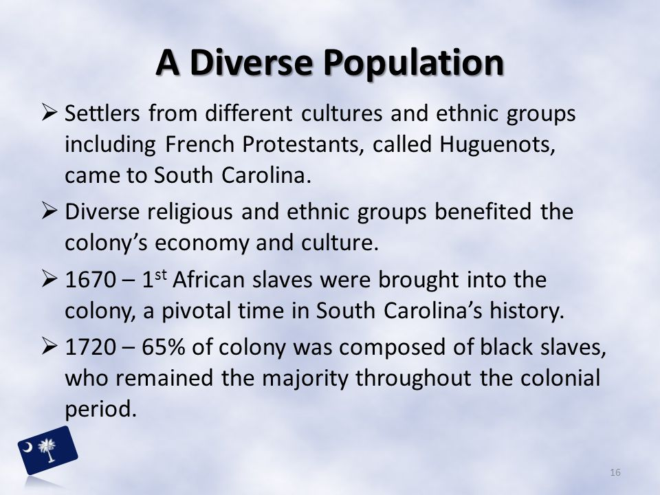 A Diverse Population Settlers from different cultures and ethnic groups including French Protestants, called Huguenots, came to South Carolina.