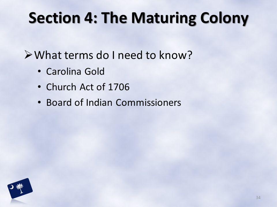 Section 4: The Maturing Colony