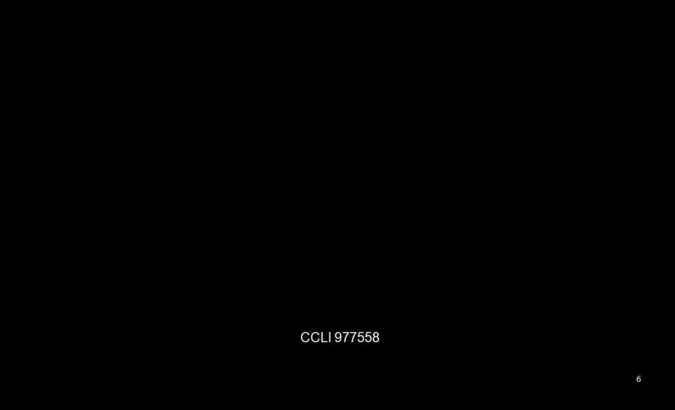 CCLI 977558