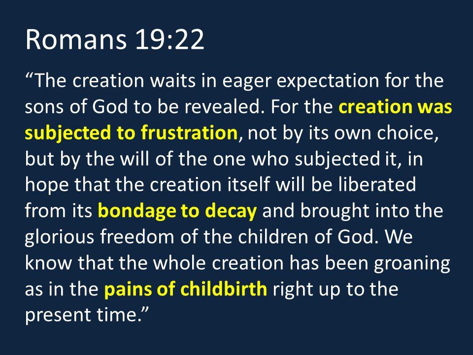 Romans 19:22