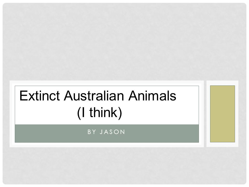 Extinct Australian Animals (I think)