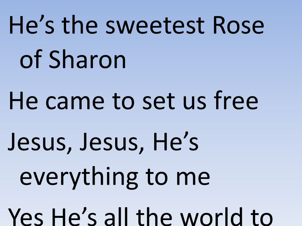 He's the sweetest Rose of Sharon