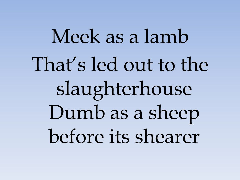 Meek as a lamb That's led out to the slaughterhouse Dumb as a sheep before its shearer 45