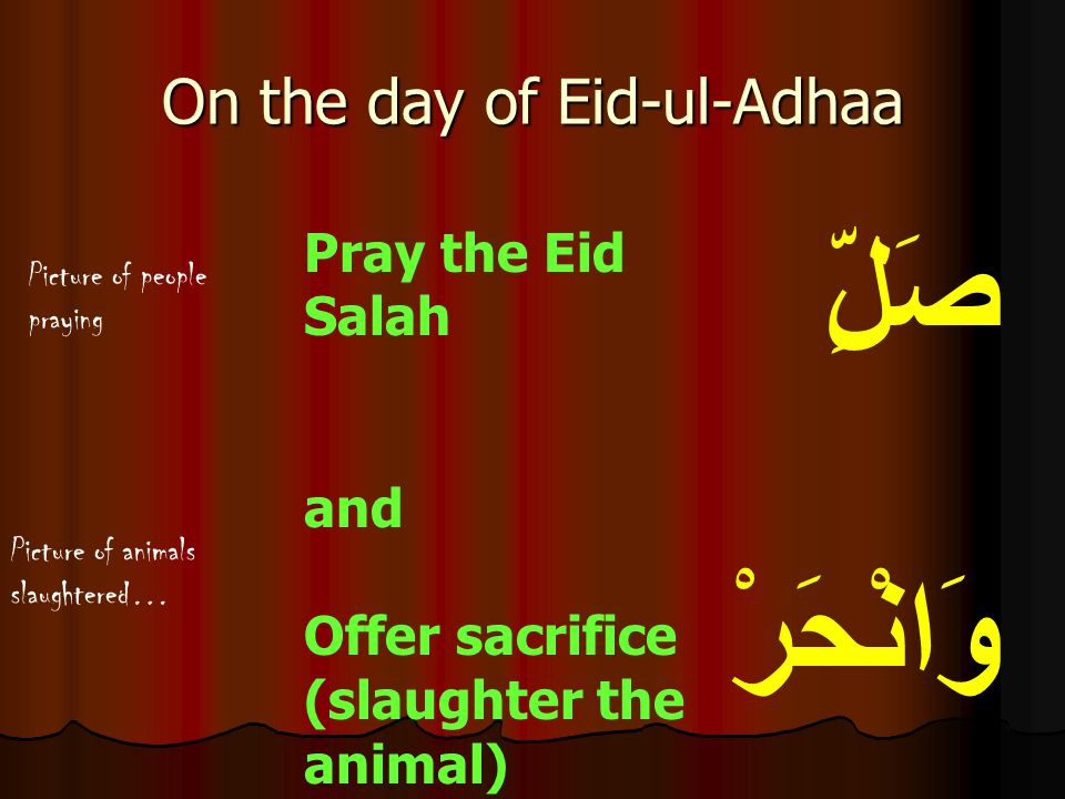 On the day of Eid-ul-Adhaa
